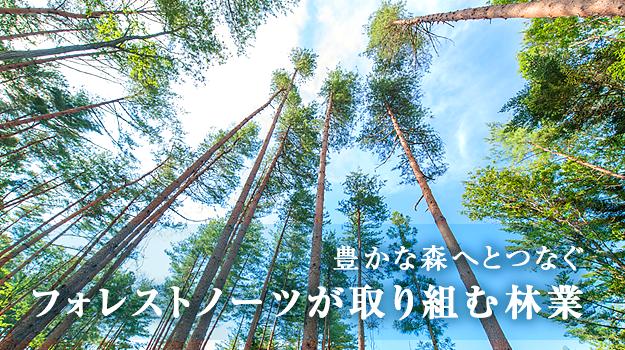 Forestnote フォレストノーツ